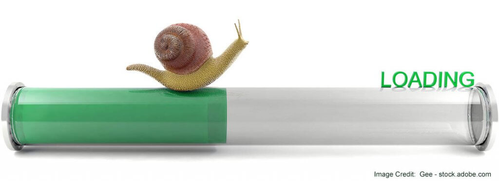 Web page loading speed graphic with snail